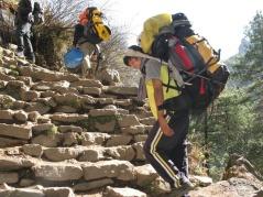 Lilla seniga sherpan Prim bär våra ryggsäckar hela vägen upp.