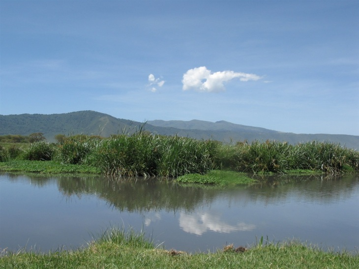 En oas i kratern
