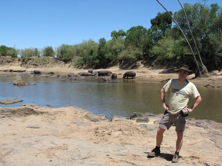 Flodhästar vid Serengeti gränsen