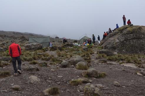 En samling porters i jakten på telefonnät på en stor sten i Karranga Valley.