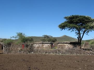 Det är kvinnorna i byn som bygger lerhyddorna - av koskit. Inhägnaden skyddar för vilda djur.