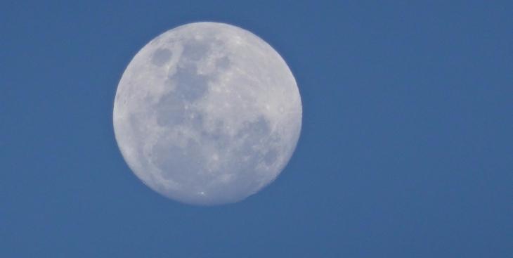 Stor måne