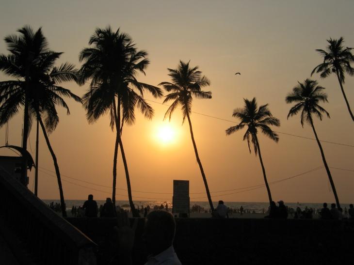 Goa sol och palmer