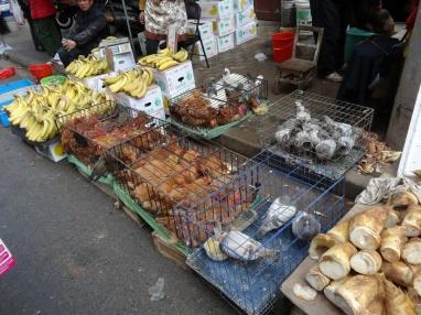 Matmarknaden i Yuyuan.. ingen vacker syn.