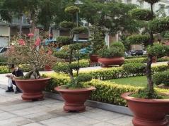 Vietnam Park på dan