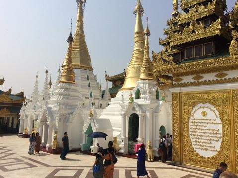 Yangon Shweagon Vitt