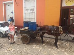En av hästtransporterna.